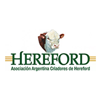 Asociación-Argentina-Criadores-de-Hereford