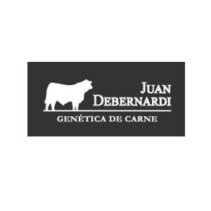 Juan-Debernardi-SRL